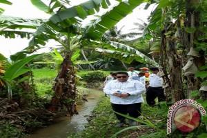 Wakil Walikota Sisir Sungai Tinjau Penyebab Banjir