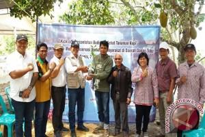 PT. Tirta Sibayakindodan LPPM IPB Bersama Warga Sipaholon Horison tanam  Kopi di Daerah Tangkapan Air Danau Toba